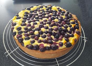 Cheesecake blauwe bessen