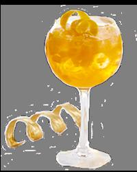 Gin-Tonic Orange Twist